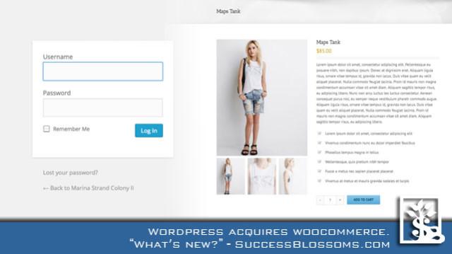 Wordpress help to ecommerce entrepreneurs